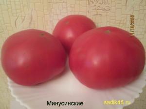 минусинские (6)