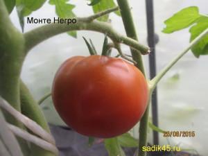монте негро 1 (3)