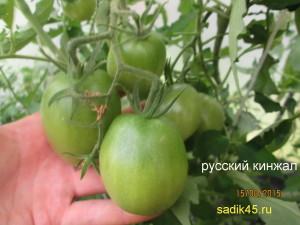 русский кинжал 1 (1)