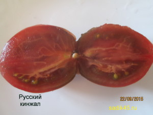 русский кинжал 1 (13)