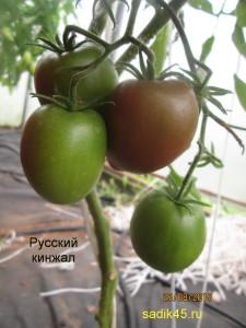 русский кинжал 1 (2)