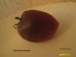 русский кинжал 1 (6)