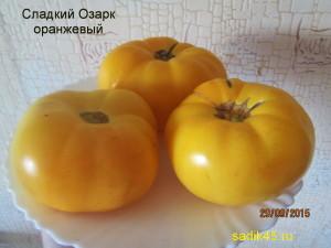 сладкий озарк оранжевый 1 (7)