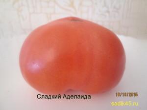 сладкий аделаида (1)