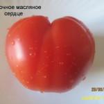 сливочное масляное сердце (1)