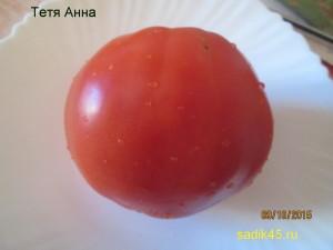 тетя анна  (1)