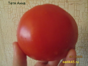 тетя анна (3)