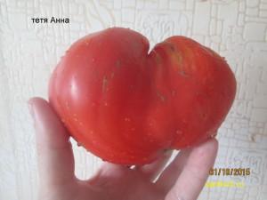 тетя анна (7)
