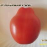 фиолетово-малиновая баска 1 (6)
