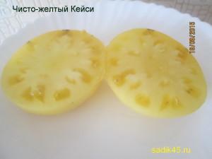 чисто-желтый кейси 1 (1)