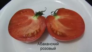 абаканский розовый 1 (2)
