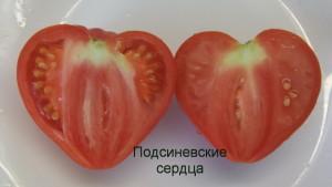подсиневские сердца1 (2)