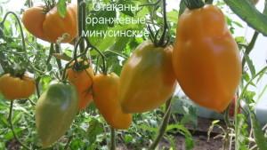 стаканы оранжевые минусинские 1 (3)