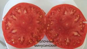 яблочный минусинский1 (16)