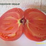 белорусское сердце11