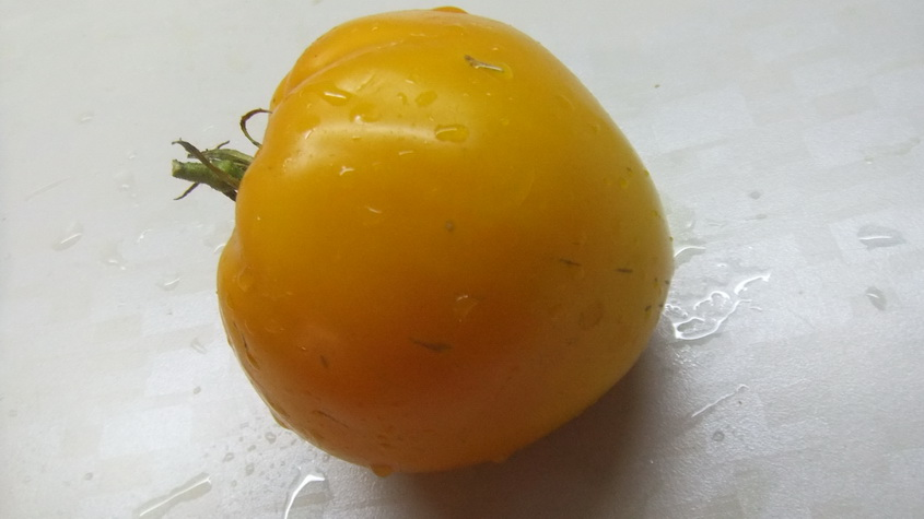 бычье сердце минусинское желтое (5)