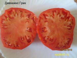 дженкинс грик1 (7)