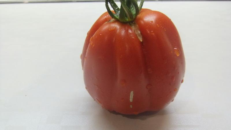итальянский рифленый (6)