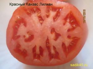 красный канзас лилиан