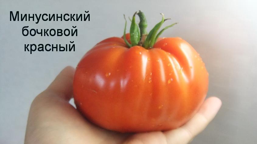 минусинский бочковой красный (5)
