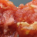 минусинский бочковой красный (8)