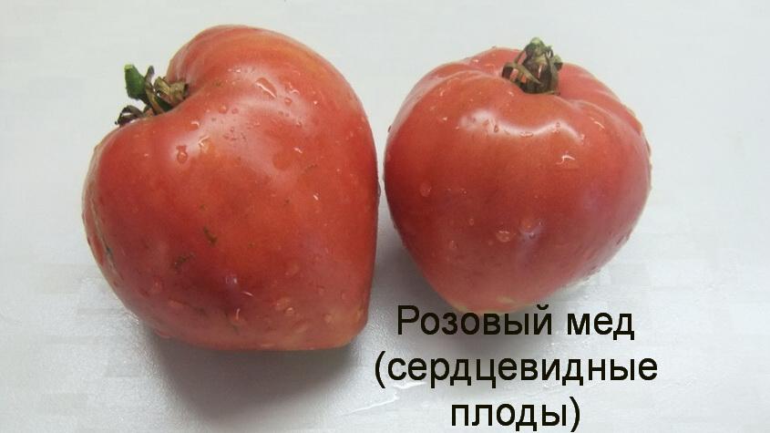 розовый мед сердце (2)