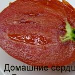 домашние сердца гонсиоровских (1)