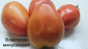 властелин минусинский (5)