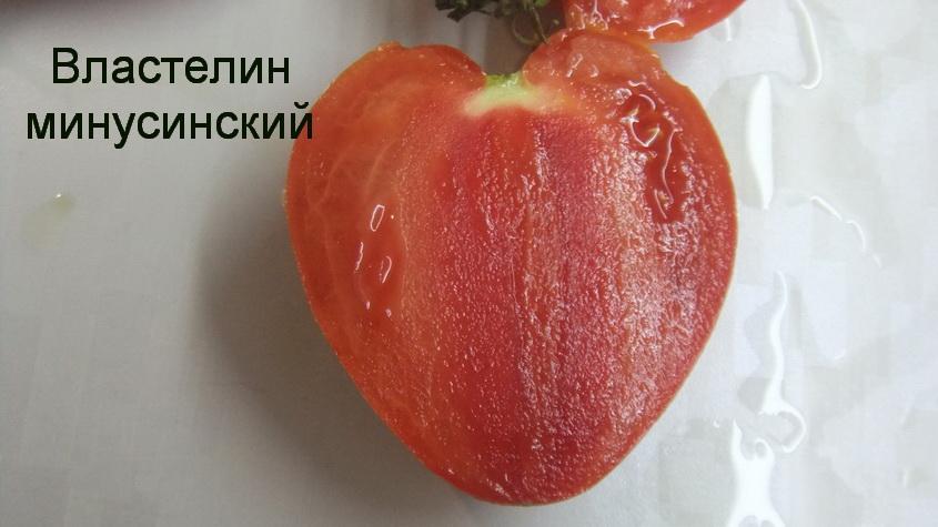 властелин минусинский (9)