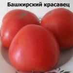 башкирский красавец (2)