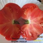 венгерский в форме сердца1 (3)