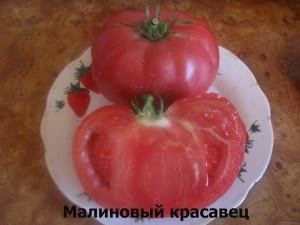 малиновый красавец1