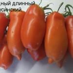 перцевидный минусинский (1)