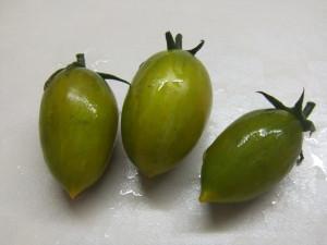 зуб кабана (2)
