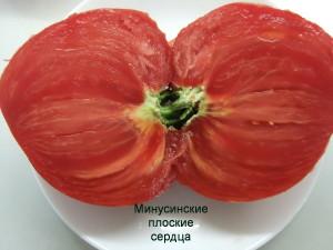 минусинские плоские сердца (6)