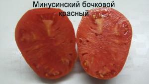 минусинский бочковой красный (1)