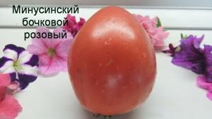 минусинский бочковой розовый (5)