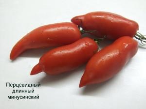 перцевидный длинный минусинский (4)