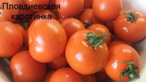 пловдиевская каротинка (4)