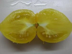 лимонный лед (1)