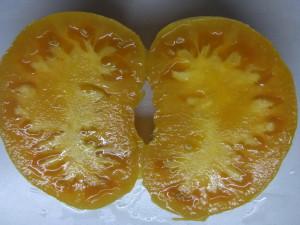 вольф зосси оранжевый (1)