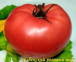 узбекский розовый шар