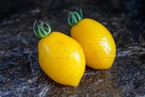 teton-de-venus-jaune (1)